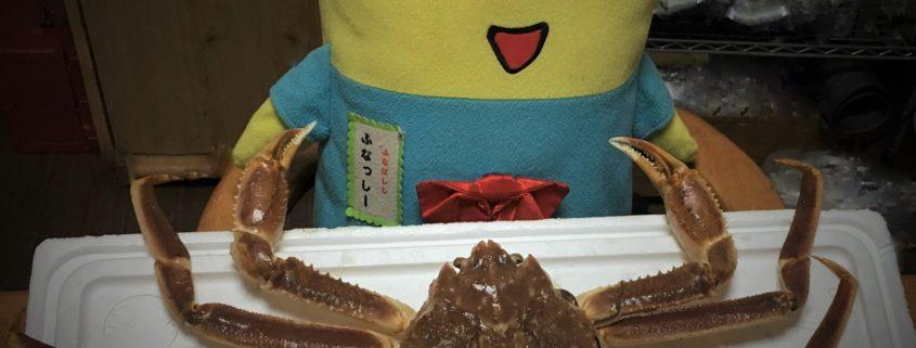 旬の日本海産本ズワイガニは身がぎっしり!