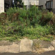 埼玉県さいたま市|空き地の雑草除去 BY便利屋ハッピー