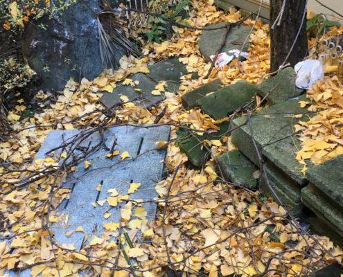 埼玉県越谷市/庭木の多い空き家の管理