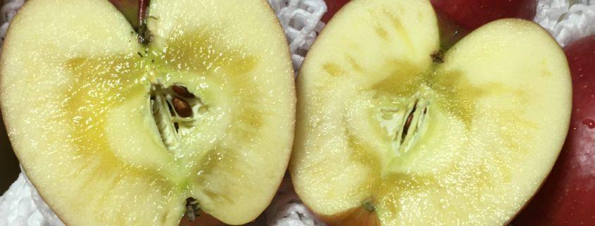 青森県弘前産|美味しさの証「いぼりりんご」 by便利屋ハッピー