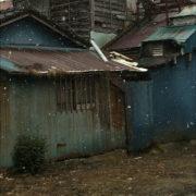 東京都青梅市|相続に伴い遺品整理、解体、売買までby便利屋ハッピー