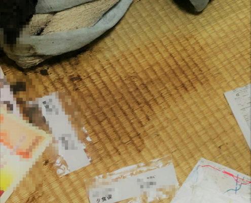 川崎市宮前区(1Kマンション)|特殊清掃、消臭、除菌、畳替え by便利屋ハッピー